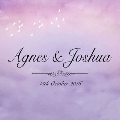 Agnes&joshua wedding